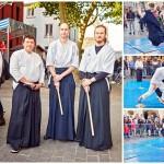 wago dojo & hiron matsuri festival japonais d'arras 2016 aikido (6)